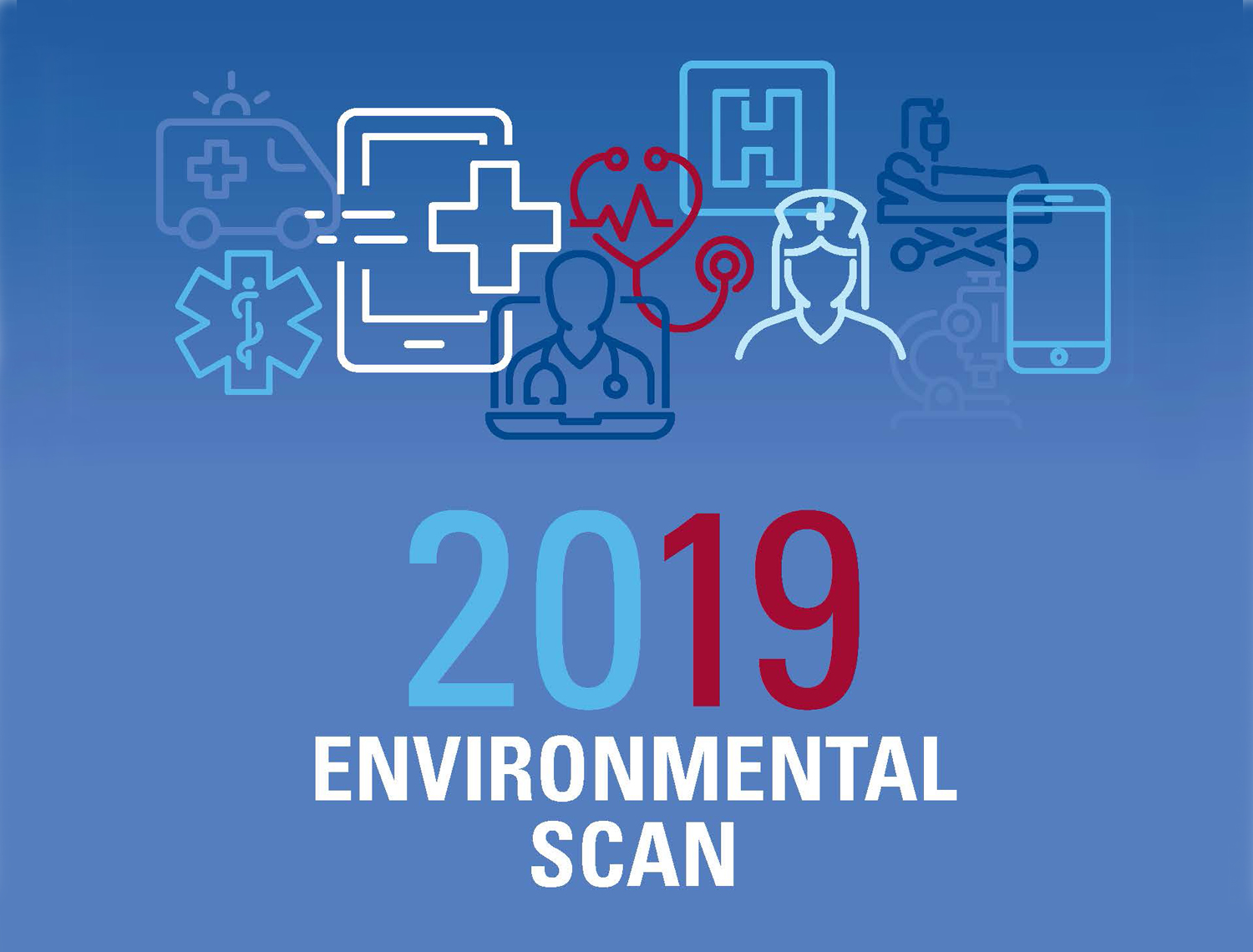 2019 environmental scan graphic