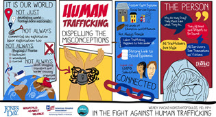 Human Trafficking Misconception image